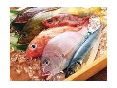 冷冻水产品复配磷酸盐
