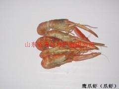 供应鹰爪虾(爪虾)