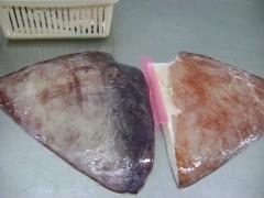 大量批发秘鲁巨鱿鱼生板(耳、翼、翅、尾)