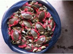 纯天然青蟹,欢迎前来订购。
