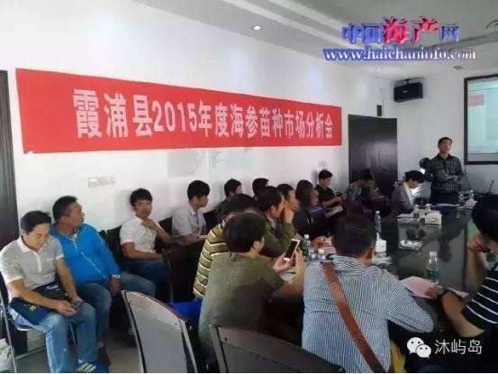 福建宁德霞浦县2015年度海参苗种市场剖析会