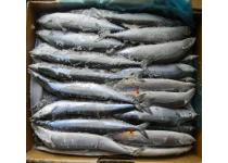 水产品;农产品;果蔬;罐头食品;家禽制品;