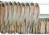 蟹类; 虾类; 贝类; 鱼类; 冰鲜类; 冻品类;