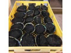 供应海鲜冻品鲍鱼 新西兰黑金鲍批发 海鲜冻品批发 鲍鱼价格