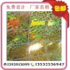 金色激光镭射标签 东莞揭开留子标签 广州镭射防伪标贴