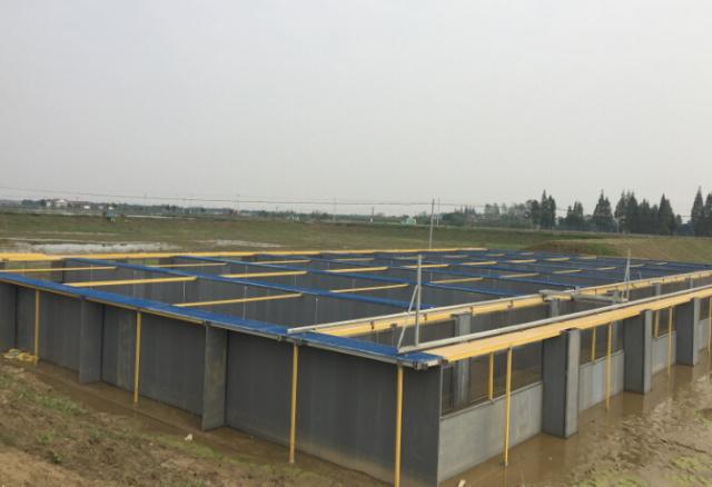 浙江湖州市水产站专家到德清指导池塘循环水养殖系统建设图片