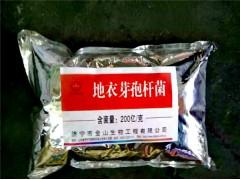 地衣芽孢杆菌