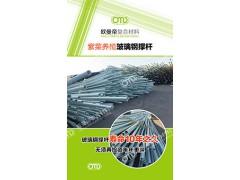 玻璃钢紫菜插杆(撑杆)深海紫菜养殖专用厂家直销
