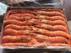 阿根廷红虾L1批发