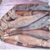 厂家直销阿根廷鱿鱼 鱿鱼各种规格 鱿鱼价格 批发公司及电话