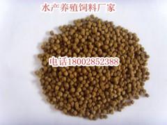 台湾泥鳅饲料批发专业首选泥鳅养殖技术要点泥鳅饲料批发商