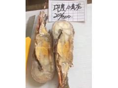 小青龙冷冻龙虾仔活冻批发