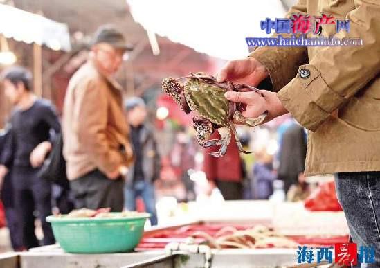 """虾蟹小涨价 春节前厦门市民""""菜篮子""""总"""