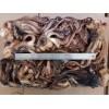 秘鲁鱿鱼头 批发 加工厂 加工捡出 烧烤 铁板