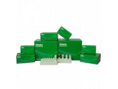 虾肝肠胞虫(EHP)核酸检测试剂盒