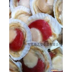 供应半壳扇贝/扇贝/日式料理/冷冻海产品