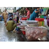 越南西贡鱼市场