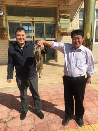 中国对虾黄海5号养殖及亲虾培育通过专家现场验收
