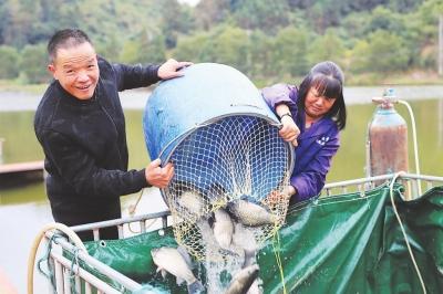 从传统养鱼、泥地养猪,再到今日生态养鱼:摘下污染帽 养活生态鱼