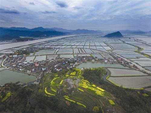 一只蟹,成就了一座城:浙江台州三门青蟹横行致富道