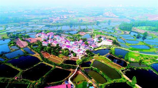 黄州陶店乡幸福村:湖北鱼苗孵化第一村的三级跳