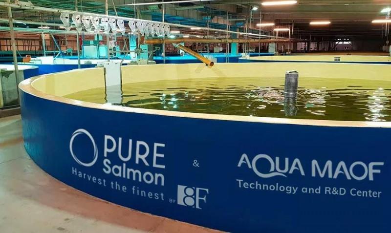 陆基养殖项目再下一城,Pure Salmon将RAS带进非洲