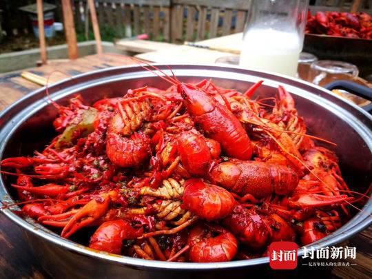 小龙虾的夏天:餐馆生意滑铁卢 行业或将经历洗牌