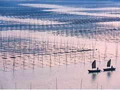 关于水产养殖百科全解