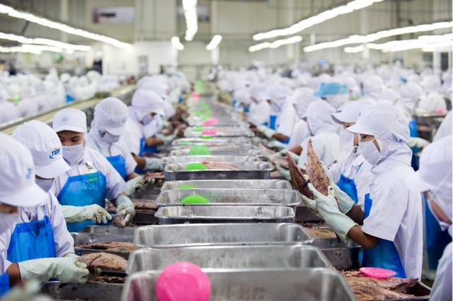 14000吨!中国金枪鱼转移至欧洲市场,日本企业也加入竞争?