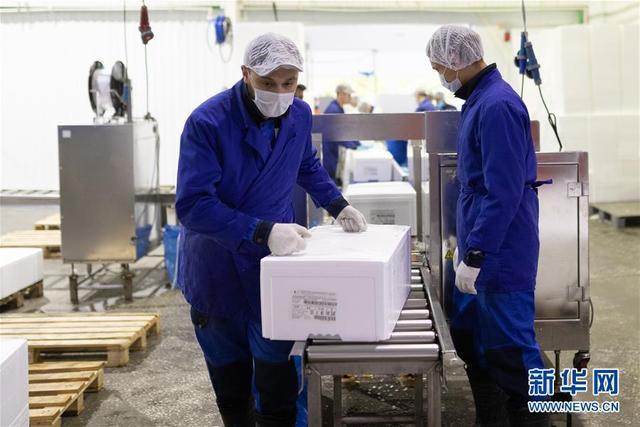 希望我们的鲑鱼能赢得中国消费者的喜爱——俄罗斯水产养殖公司养殖场参观记