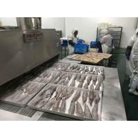 厂家直销鲍鱼液氮速冻机