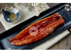 蒲烧鳗鱼供应