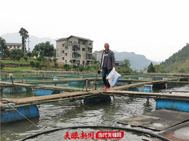 勇战病魔,看贵州遵义癌症患者韩小健的养鱼之路
